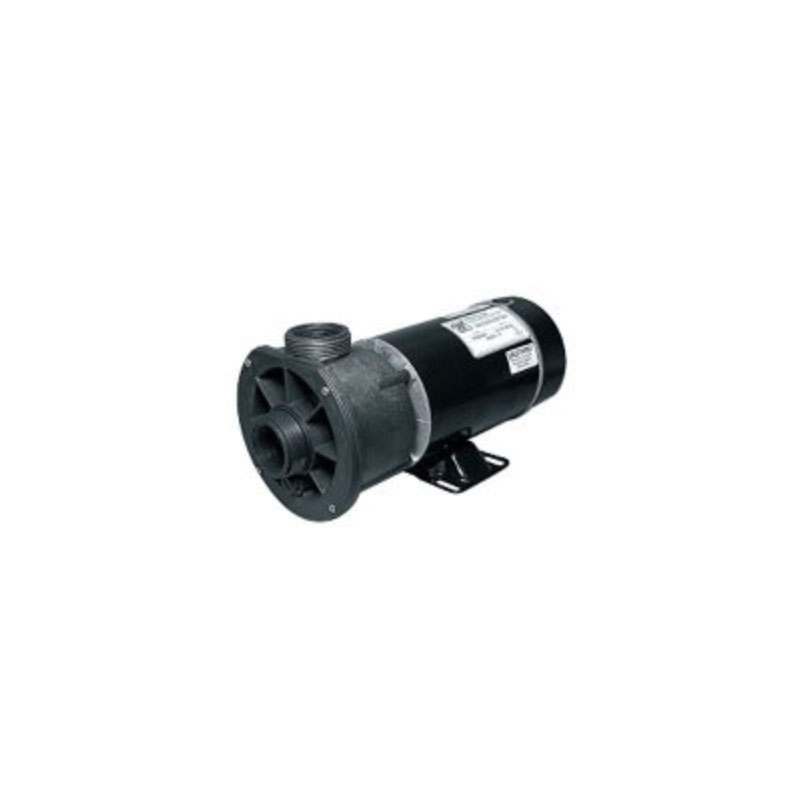 "Pump - 1.5HP, 110V, 2-Speed  w/ 1.5"" CD Wetend (#5032)"