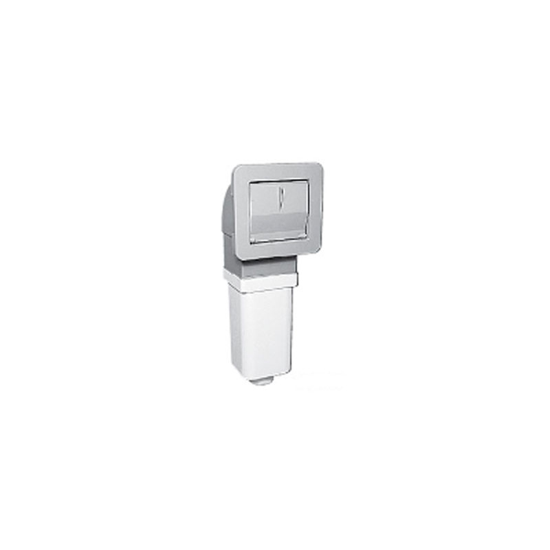 Filter Assembly - 20sqft Skimmer w/ 2 Elements - White (#5101650)