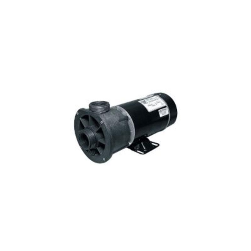 Pump - 1.5HP, 220V, 2-Speed w/ 1-1/2