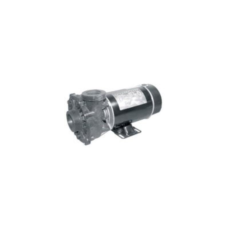 "Pump - 1HP, 110V, 2-Speed w/ 2"" SD Wetend (#5163)"