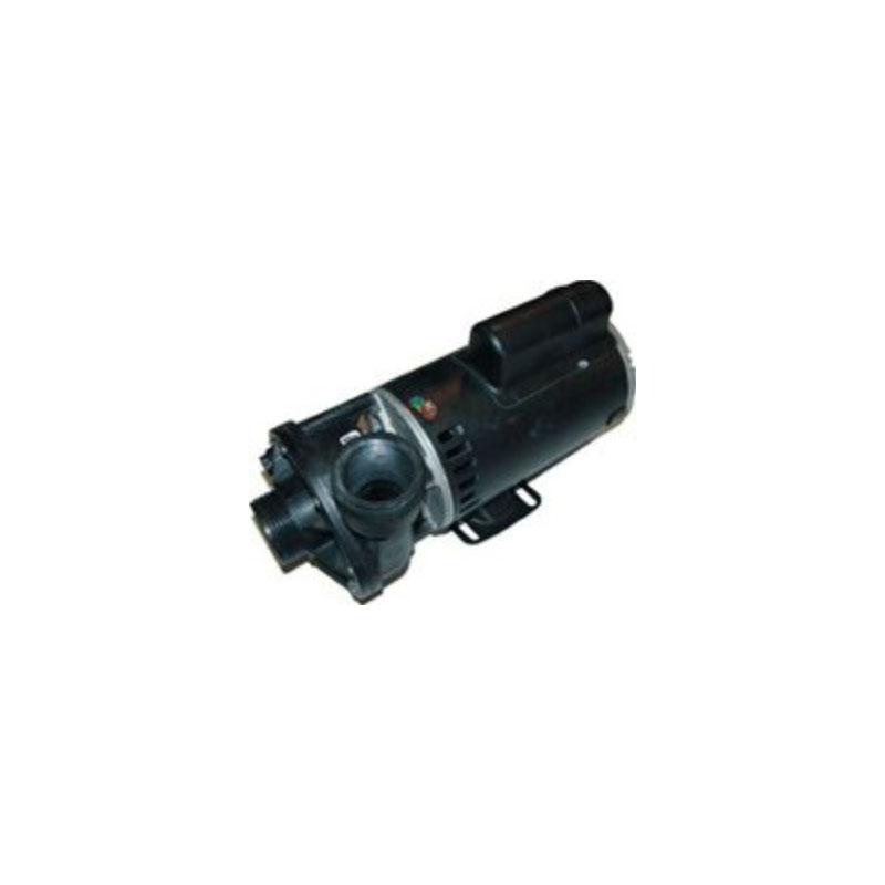 Pump - 2HP, 110V, 2-Speed w/ 1.5
